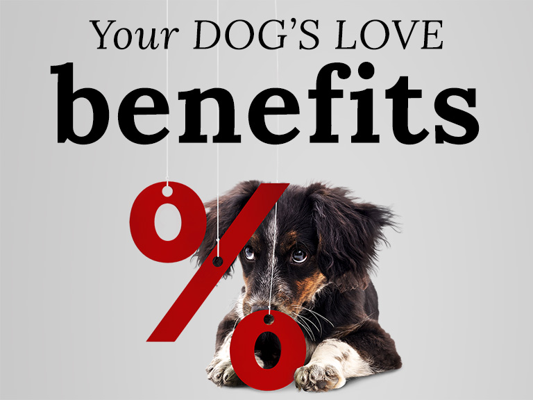 Your DOG'S LOVE Benefits